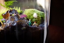 If I lived in a terrarium... / There just so cute! / by Nic Adler