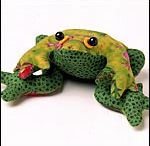 frogs / by Nancy Marshall