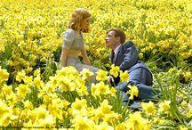 Lemon Yellow Sun / sunny yellow / by Maria Newell