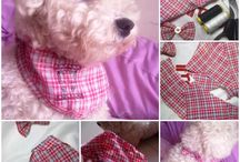 Dogs & Cats-Pet Stuff / Pet food, clothes, how to's, beds and gadgets. / by Darlene Chun