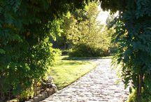 Landscape and Garden / by Case Design/Remodeling, Inc.