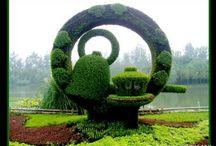 My garden / gardening / by Ina Rademeyer