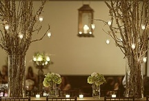 lights / by anatipos tipos
