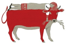 Illustration / by Mariño-Molano Ingry