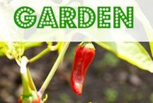 How does your garden grow? / by Jeannie Roberts