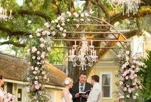 Samantha's Wedding / by Julia Bollwitt