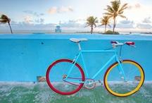 Bicycles / by Julie Herrin