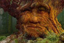 Tree Spirits / by Leslie Ehrlich