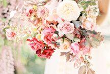Wedding Flowers / Fall Wedding Flower Ideas / by Andrea Carrozziere