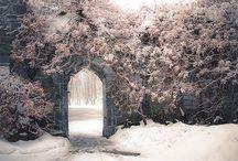 Snow / by Margo Bangert