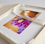 photobooks / by svetlana ivanova