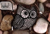 owls / by Amy Adams