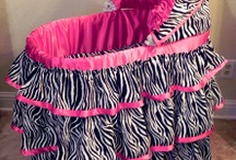 Zebra Stuff / by Shelley Jenkins
