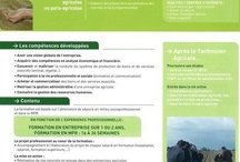 Formations Agricoles / by MFR Puy-Sec