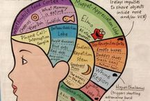 ECE helpful resources  / by Chloe Airey