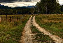 The roads not taken.  / by Brittney Lum