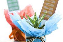 DIY gifts / by Valerie Cimarossa