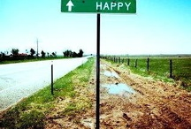 Happiness Is / by A M Y