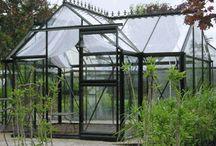 greenhouse  / by Flea Market Trixie
