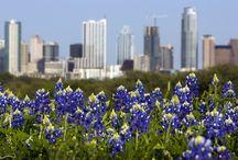 Austin / by Dena Childs
