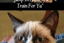 Grumpy! :-\ / by Jamie Lockwood