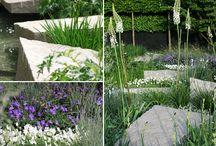 Garden / by Belinda Wandaller