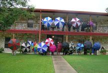 Rainy Days / Rain, Rain, Go Away….just kidding! Every drop counts, so why not enjoy it while it is here? www.lahacienda.co... #laharecovery #rainydays / by La Hacienda Treatment Center