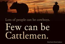 Let there be cowgirls! / by Hannah Kammeyer