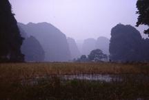 Viet-Nam / by Lilly Lu