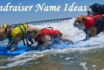 Rescue fundraiser ideas / by Jennifer Hitchner