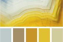 Color / by Donna Alsop