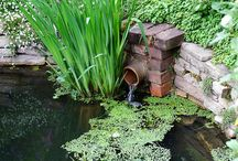 Water Features / by Launi Johnson