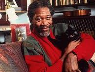 Men who love cats / by Maria Appleby