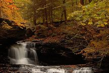 pictures(waterfalls, ponds, beaches, fountains, mountains) / by Diane Becker Lewis