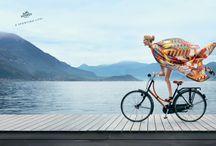 HELLO: Biking / by Michele Hart Photography