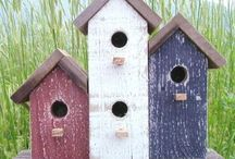 birdhouses / by Pam Cook