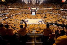 #GoldSwagger / by Indiana Pacers