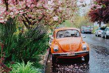 vehicles / by Aislinn McCabe