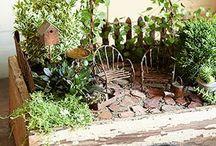 Fairy Garden / by Melly