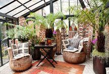 Atrium Ideas / by Allison Nunez