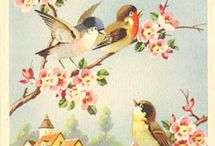 Vintage Cards & design / by Tiana Gustafson