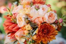 Bouquets / by Mandie Ferenchak-Martin