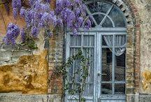 Doors and Windows / by Juli Lloyd