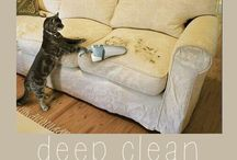 Clean homes a happy home  / by Johnna Devenney