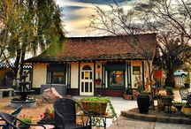 Gilbert, Arizona / Such a great place to live (and visit)! / by Jona Giammalva