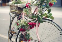 Bicycles....my sport of choice! / by Nancy Beal