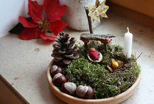 Nativity Scenes / by Angela Lingard