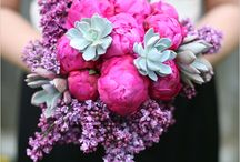 Flowers / Succulents / by Wilshire Graphic Press
