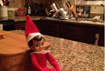Holiday Elf / by Katelyn Eisenhour