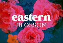 Eastern Blossom / by Bras N Things